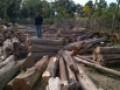 Log Jati Rakyat